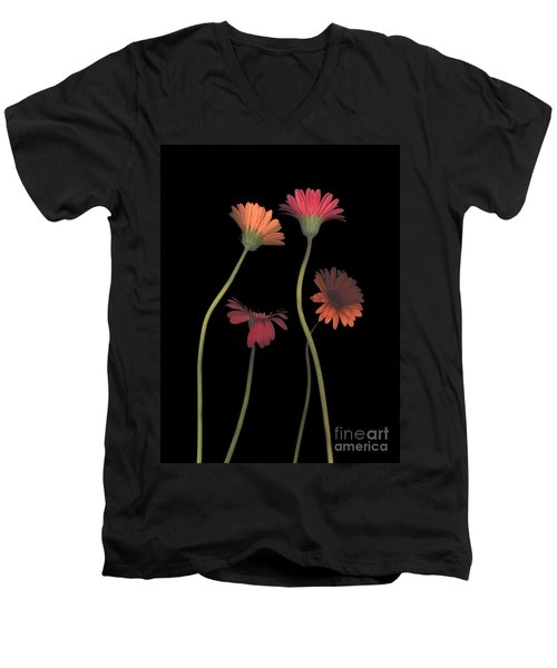 4daisies On Stems Men's V-Neck T-Shirt by Heather Kirk