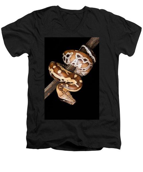 Blood Python Python Brongersmai Men's V-Neck T-Shirt by David Kenny