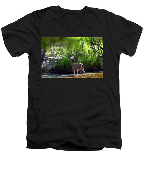 A Buck Feeding Men's V-Neck T-Shirt by Brian Williamson