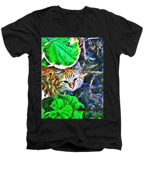 A Curious Cat Men's V-Neck T-Shirt
