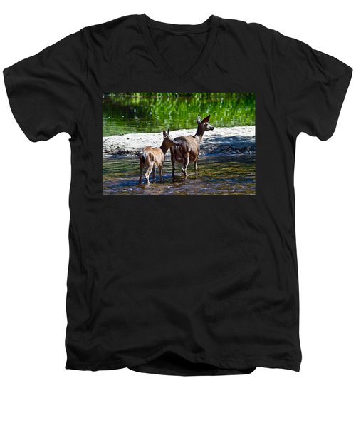 A Doe And Fawn Men's V-Neck T-Shirt by Brian Williamson