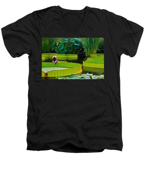 A Garden In Gentle Waters Men's V-Neck T-Shirt