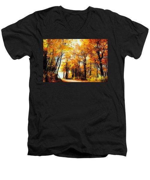 A Golden Day Men's V-Neck T-Shirt by Lois Bryan