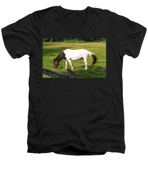 A Horse Named Dipstick Men's V-Neck T-Shirt