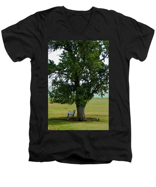 A One Horse Tree And Its Horse Men's V-Neck T-Shirt