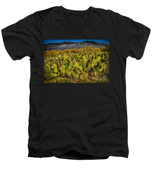 Men's V-Neck T-Shirt featuring the photograph A Prickly Pear View by Mark Myhaver