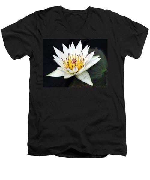 Botanical Beauty Men's V-Neck T-Shirt
