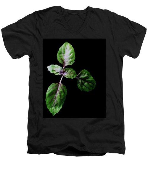 A Sprig Of Basil Men's V-Neck T-Shirt