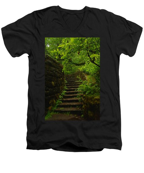 A Stairway To The Green Men's V-Neck T-Shirt
