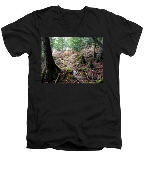 A Walk In The Forest Men's V-Neck T-Shirt