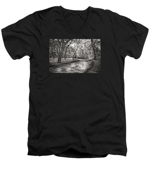 A Walk In The Park Men's V-Neck T-Shirt