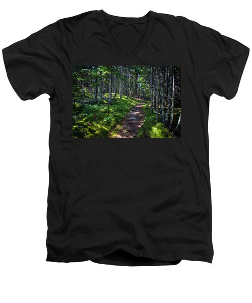 A Walk In The Woods Men's V-Neck T-Shirt by John Haldane