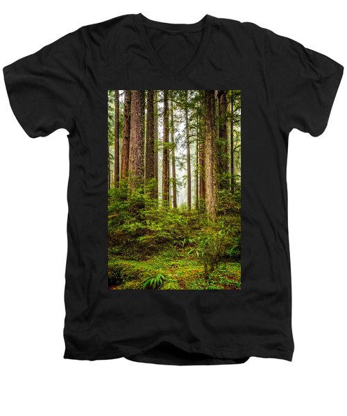 A Walk Inthe Forest Men's V-Neck T-Shirt by Ken Stanback