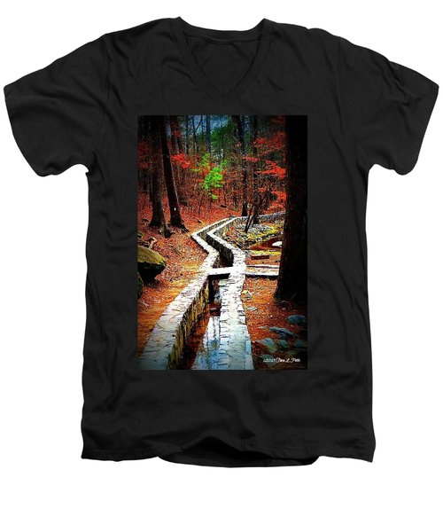 Men's V-Neck T-Shirt featuring the photograph A Walk Through The Woods by Tara Potts