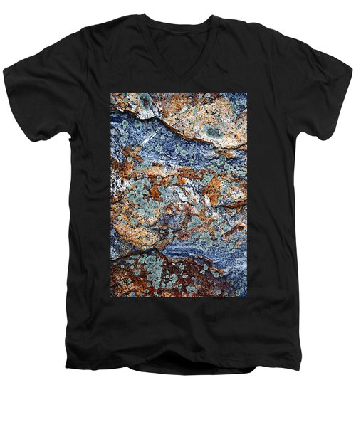 Abstract Nature Men's V-Neck T-Shirt