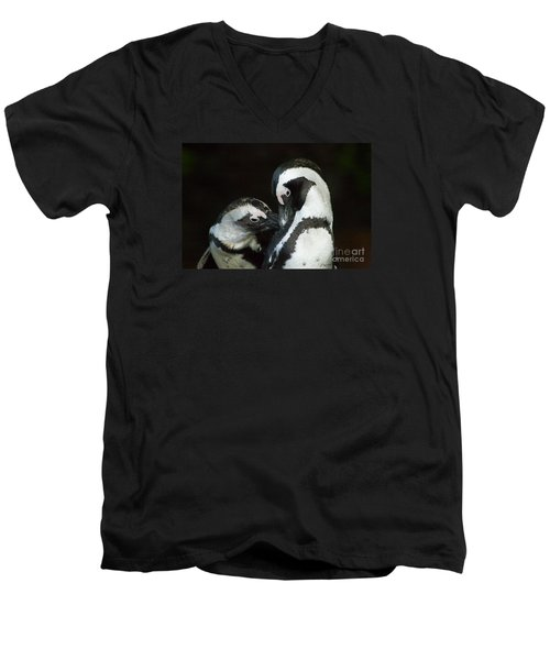 Men's V-Neck T-Shirt featuring the photograph African Black-footed Penquin-signed-#8081 by J L Woody Wooden