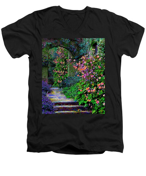 After The Rain Men's V-Neck T-Shirt by Michele Avanti