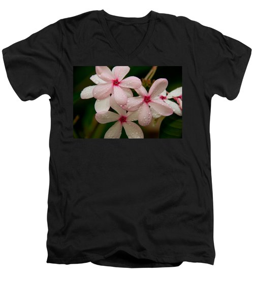 After The Rain - Pink Plumeria Men's V-Neck T-Shirt