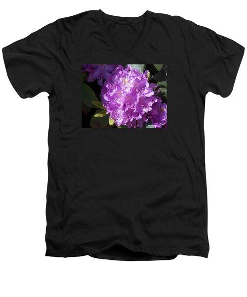 Ah Rhododendron Men's V-Neck T-Shirt