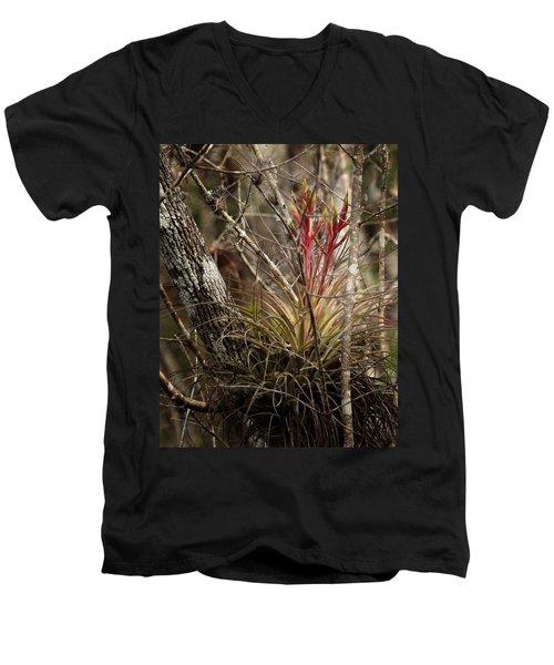 Air Plant Men's V-Neck T-Shirt