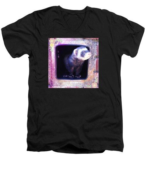 Airmail Ferret Men's V-Neck T-Shirt
