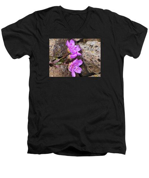 Alaskan Wildflower Men's V-Neck T-Shirt