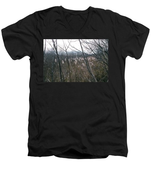 Men's V-Neck T-Shirt featuring the photograph All Aglow by David Porteus