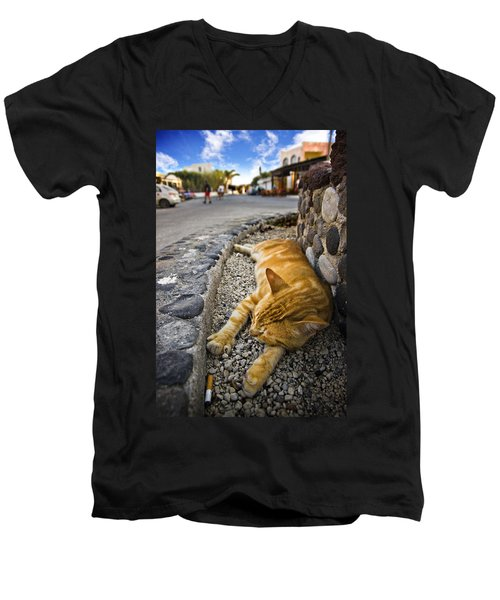 Alley Cat Siesta Men's V-Neck T-Shirt by Meirion Matthias