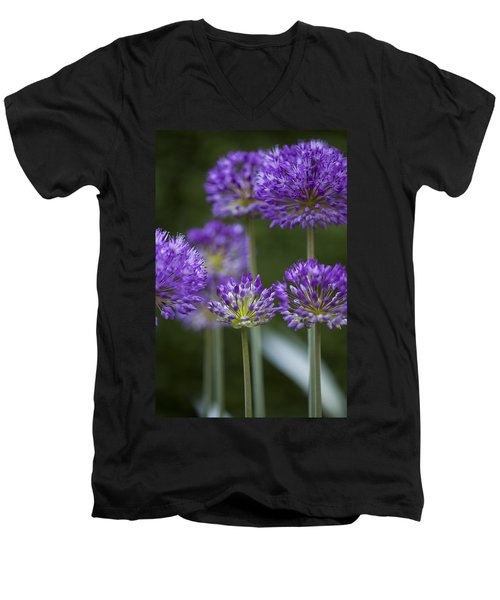 Alliums Men's V-Neck T-Shirt