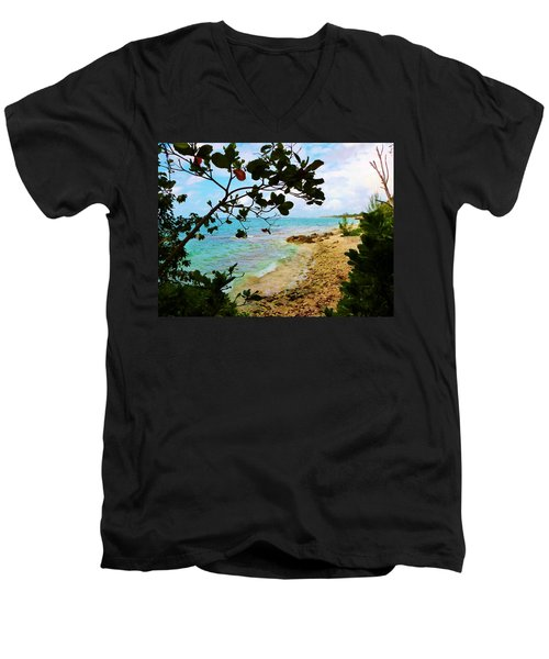 Almond View Men's V-Neck T-Shirt by Amar Sheow