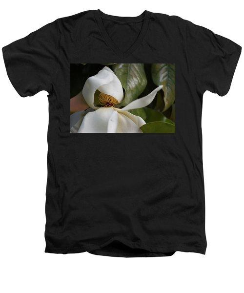 Almost Open Men's V-Neck T-Shirt