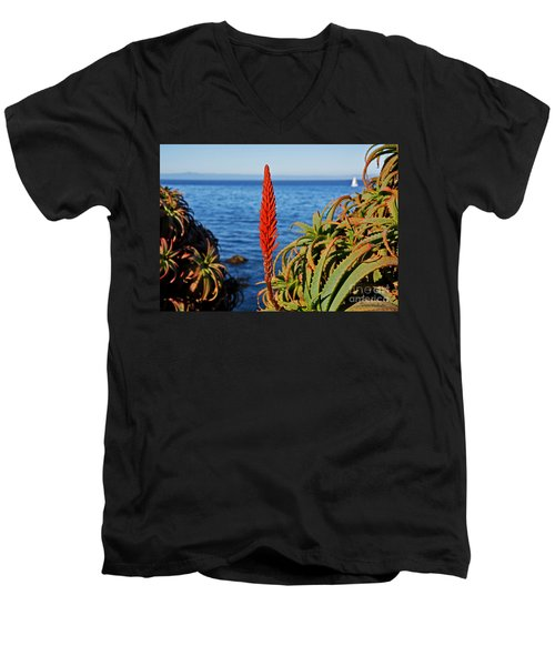 Aloe Arborescens Flowering At Pacific Grove Men's V-Neck T-Shirt by Susan Wiedmann