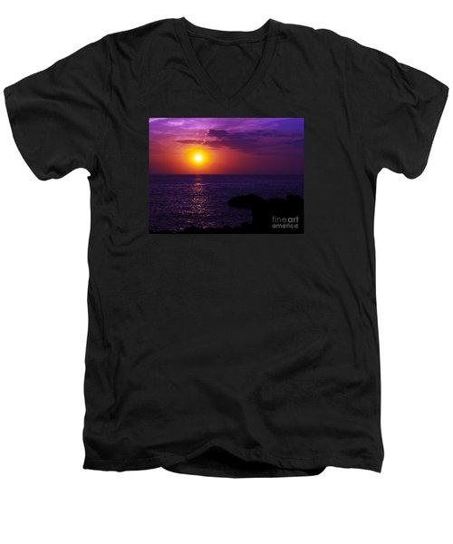 Aloha I Men's V-Neck T-Shirt by Patricia Griffin Brett
