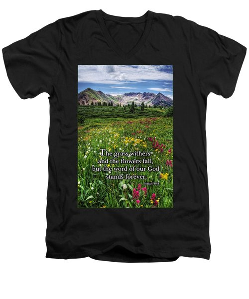 Alpine Meadow Men's V-Neck T-Shirt by Priscilla Burgers