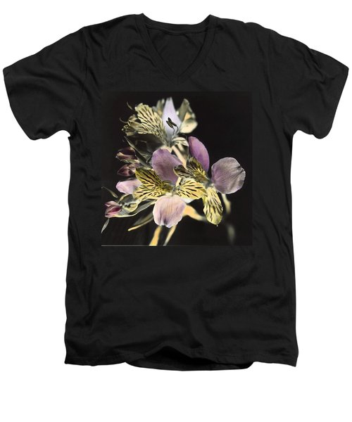 Alstroemeria Men's V-Neck T-Shirt