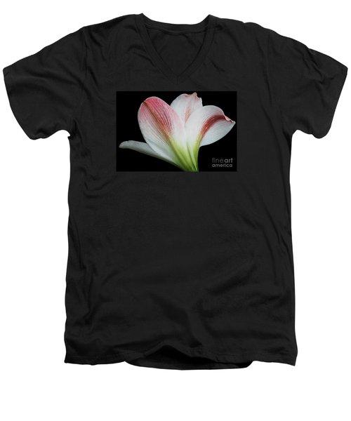 Amaryllis Men's V-Neck T-Shirt by Judy Whitton