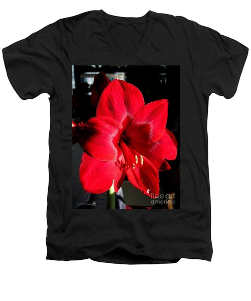 Men's V-Neck T-Shirt featuring the photograph Amaryllis Named Black Pearl by J McCombie