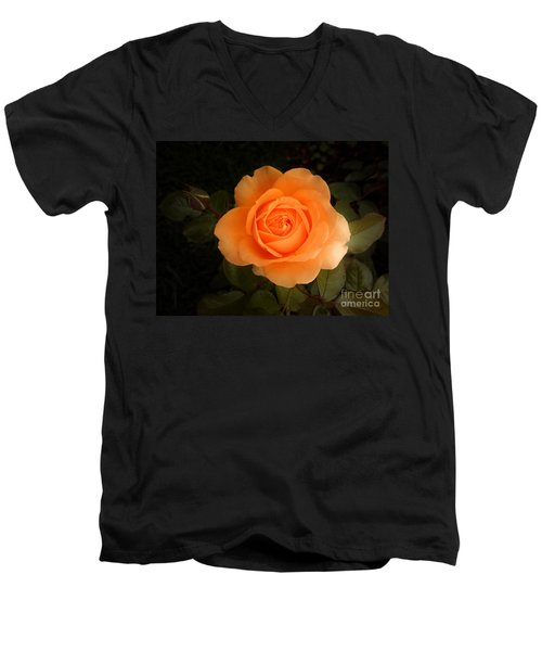 Men's V-Neck T-Shirt featuring the photograph Amber Flush Rose by Hanza Turgul