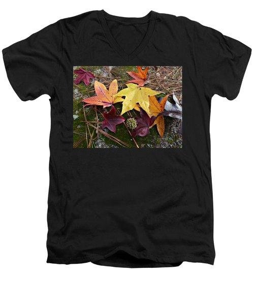 Autumn Men's V-Neck T-Shirt by William Tanneberger