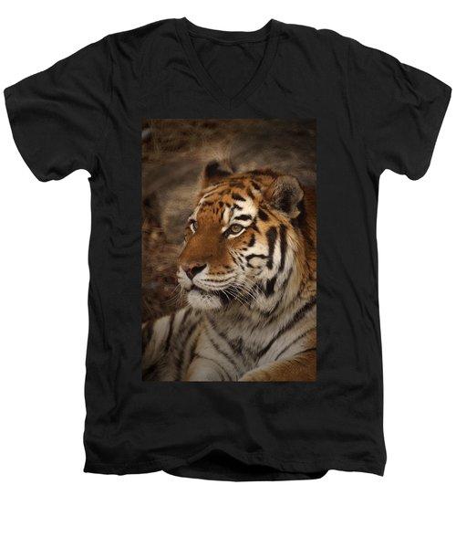 Amur Tiger 2 Men's V-Neck T-Shirt