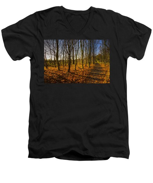 An Autumn Walk Men's V-Neck T-Shirt