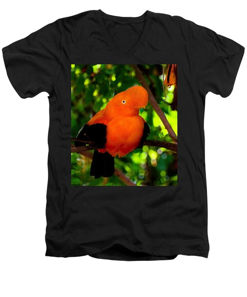Andean Cock Of The Rock Men's V-Neck T-Shirt