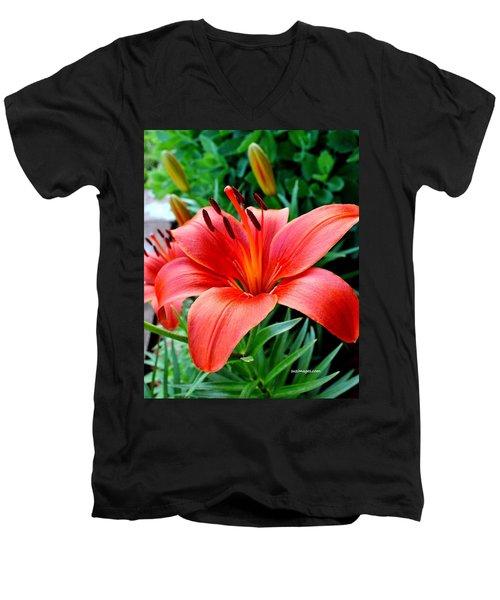 Andrea's Lily Men's V-Neck T-Shirt