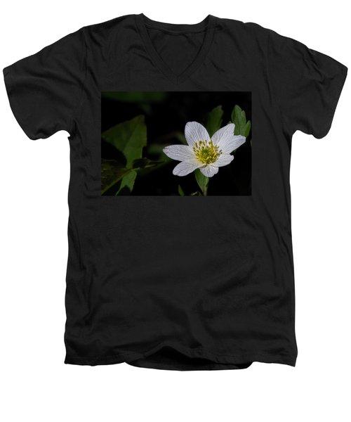 Anemone Nemorosa  By Leif Sohlman Men's V-Neck T-Shirt