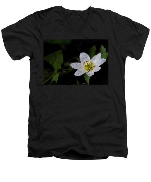 Anemone Nemorosa  By Leif Sohlman Men's V-Neck T-Shirt