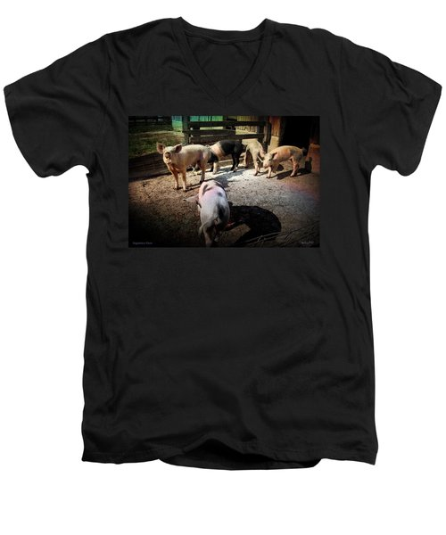 Men's V-Neck T-Shirt featuring the photograph Angustown Piggies by Cynthia Lassiter