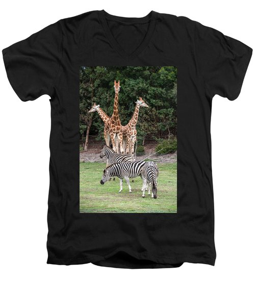 Animal Kingdom II Men's V-Neck T-Shirt