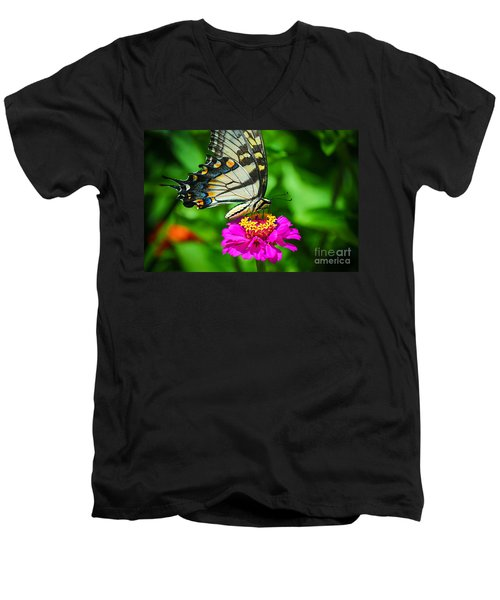 Anise  Swallowtail Butterfly Men's V-Neck T-Shirt