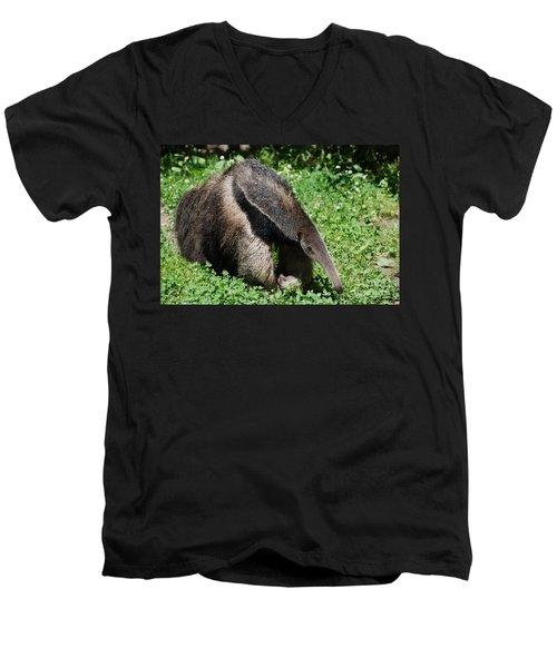 Anteater Men's V-Neck T-Shirt by DejaVu Designs