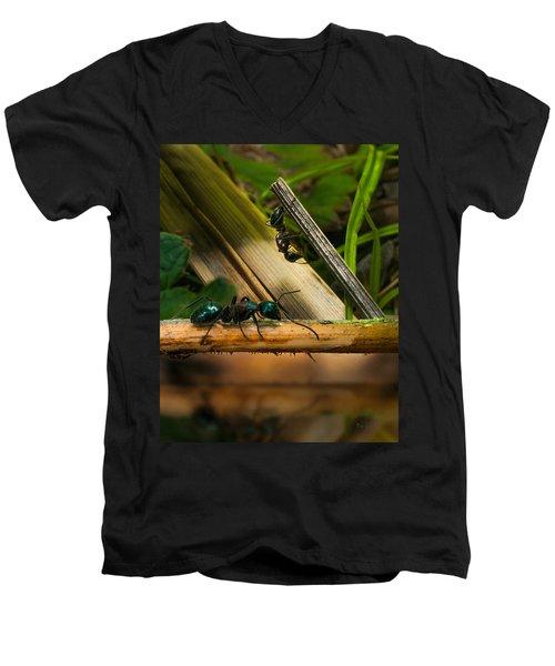 Ants Adventure 2 Men's V-Neck T-Shirt